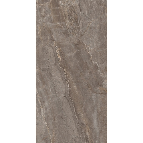 SG809502R | Parnassus ash-grey rectified